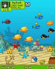 Game biển xanh sôi động online cho điện thoại
