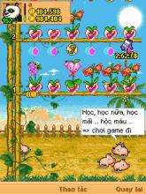 Game khu vườn thần kỳ online